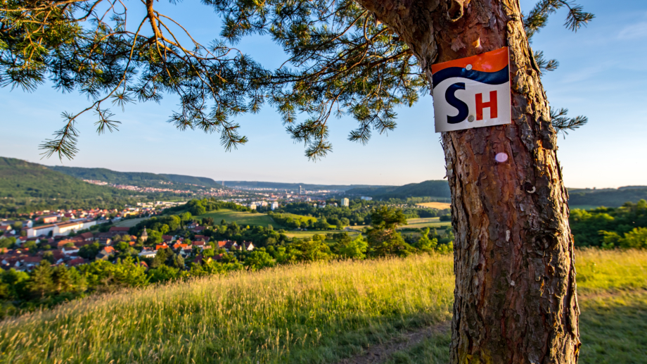 Ausschilderung des Wanderwegs SaaleHorizontale mit Blick auf die Tagungsstadt Jena © JenaKultur, Foto: Christian Häcker