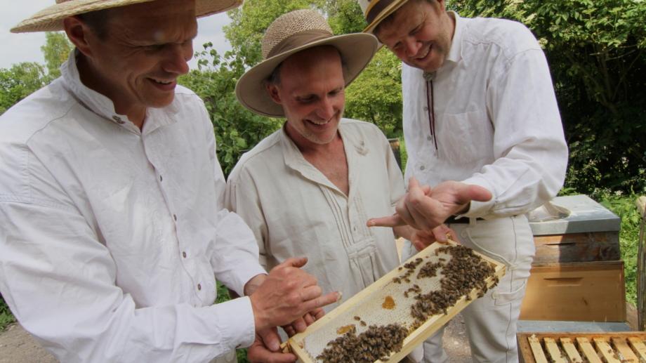 Drei Schlossimker überprüfen ihre Bienenkästen im Weimarer Land © Landratsamt Weimarer Land, Foto: Uwe Germar