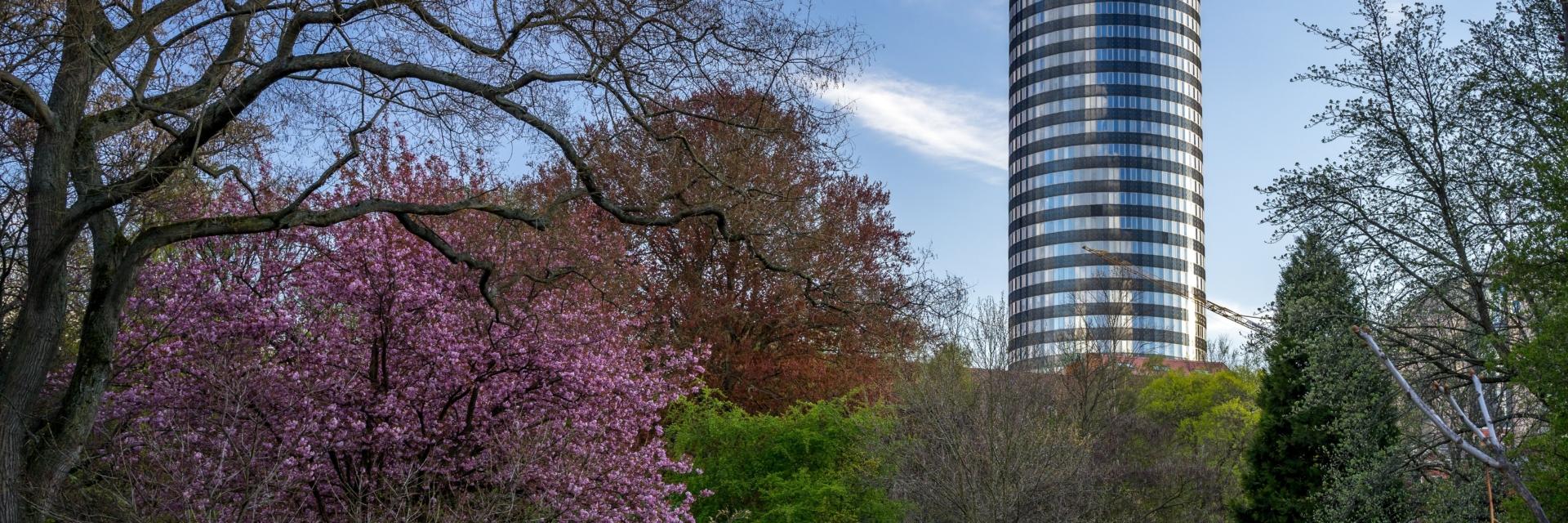 Jena im Frühling - Botanischer Garten